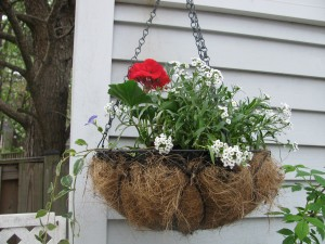 This basket can be seen from outside the back fence.