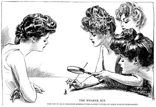 By artist Charles Dana Gibson, 1903.