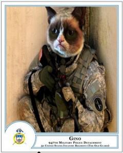 Image via www.army.mil