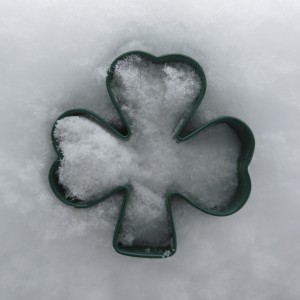 Adding a bit o'Irish to my snowy backyard today...